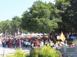 重阳公益慈善健步行现场盛况。